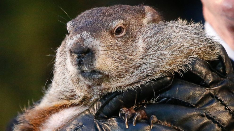 When was the first Groundhog Day?