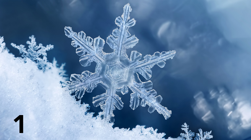 All about snowflakes and how to preserve them!