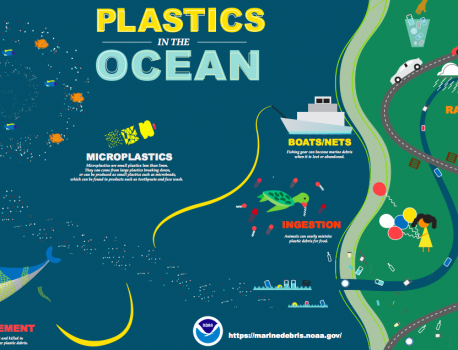 Pollution Solution: Earth Day & the Great Pacific Garbage Patch